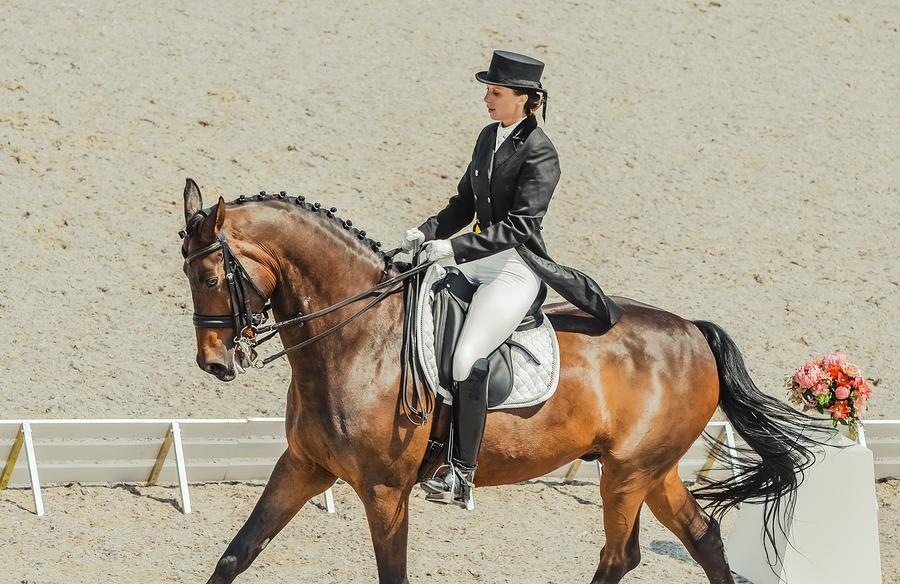 Burghley Horse Trials, Dressage