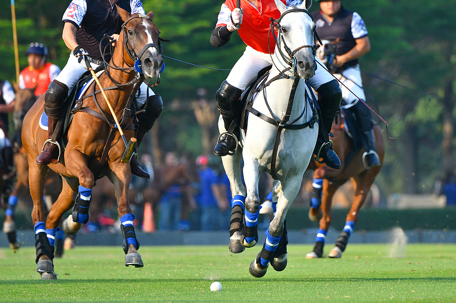 Chestertons Polo in the Park, VIP with hotel